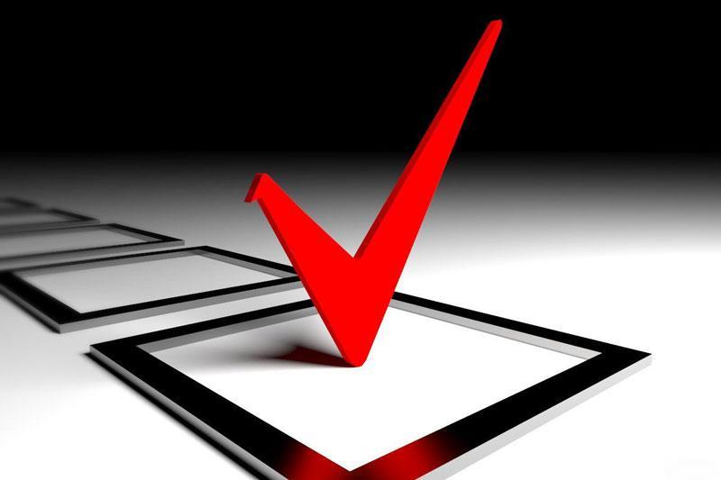 ЦИК зарегистрировал 14 из 22 кандидатов в депутаты от партии БСДГ
